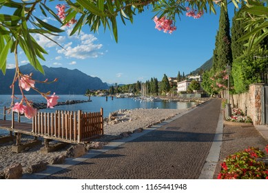 pictorial lakeside promenade malcesine along garda lake shore. view through oleander branches with pink blossoms.