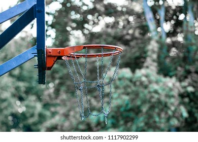 Picture of a basketball field goal with the trees in background.