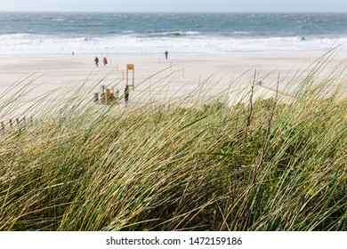 picture of the beach at the Northern Sea at Domburg, Netherlands
