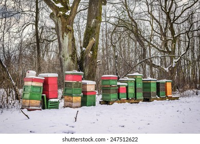 Picture of been boxes in with snow in winter