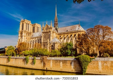 picture of the Cathedral of Notre-Dame de Paris with blue sky and autumn trees