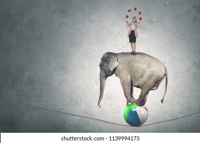 Picture of Caucasian businesswoman juggling with many red balls while standing above circus elephant