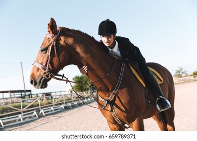 Picture of concentrated young lady sitting on her horse. Looking aside.