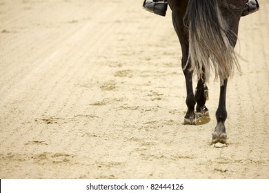 A picture of an equestrian on a horse in motion over natural background