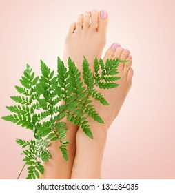 picture of female feet with green fern leaf over beige background