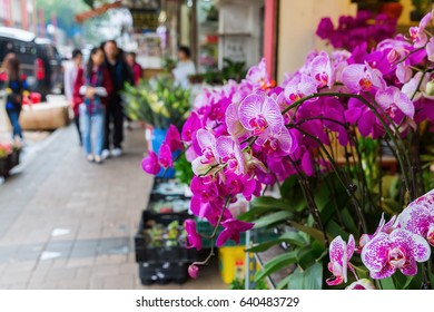 picture flower stalls at the famous flower market in Hong Kong