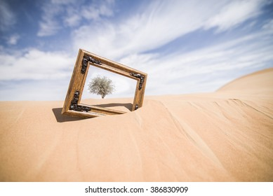 Picture Frame in the Desert