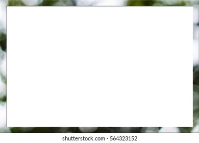 picture frame form Nature bokeh lights