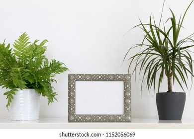 picture frame mockup with plants