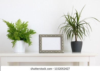 picture frame with plants - interior mockup