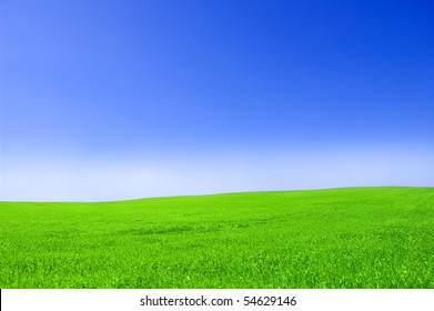 Picture of green field and sky in summer.