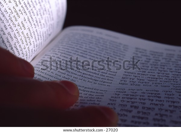 Picture of a hand and the Torah