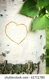 Picture of heart curved on a birch