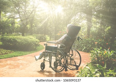 Picture of lonely elderly woman looks pensive in the park while sitting on the wheelchair