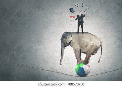 Picture of a male manager juggling with many objects while standing above circus elephant