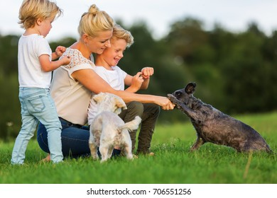 picture of a mother with two children they play with two small dog outdoors