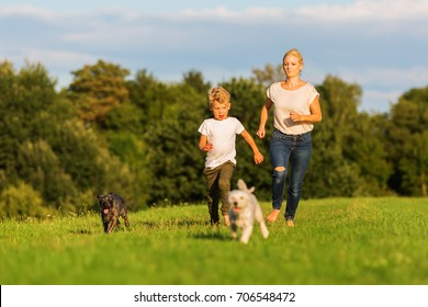 picture of a mother who runs with her boy and two small dog on a meadow