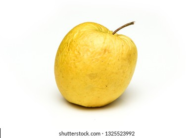 A picture of an ordinary green Golden Delicious apple, without modifications The apple is old, dry an not attractive. It is wrinkled and puckered.