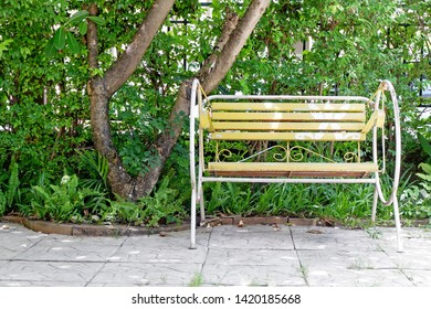 Picture of Patio beautiful garden rock floor plank green tree leaves with yellow rocking chair