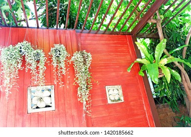 Picture of Patio: terrace green leaves mobile trees lath above the rock plank floor