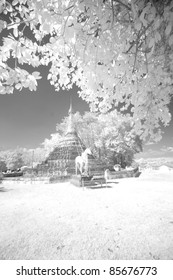 Picture place in infrared.