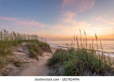 A picture sand dunes covered in marram grass during a beautiful sunrise in the Outer Banks, North Carolina.