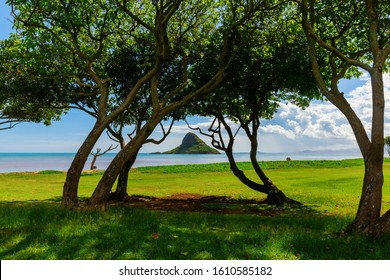 picture of a scenic view at Kualoa Regional Park in Oahu, Hawaii