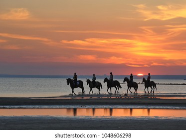 In the picture sunset at sea.Reflections of the sunset light on the water, beautiful colors of the sky.Horses rode along the shore.
