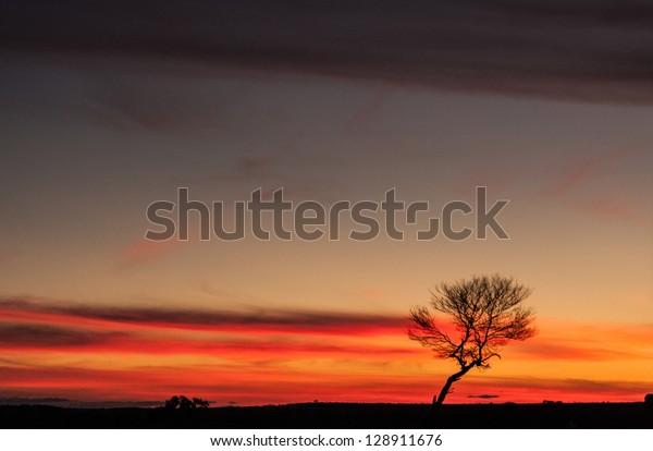 Picture taken in Kiribati, Australia