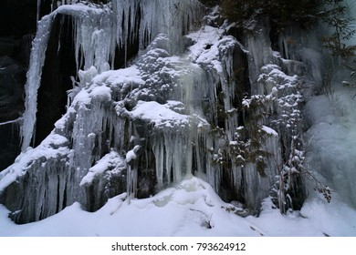 Picture was taken at National Park in winter