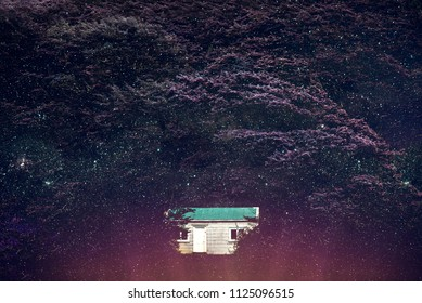Picture of a thick purple forest full of stars. There's an isolated white house with a turquoise rooftop in between the huge trees.