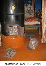 Picture of village life. Grey furry cat is heated on the wooden floor near the village metal stove on a cold winter evening in a log Russian house