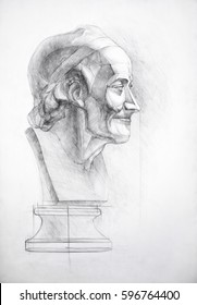 Picture of the Voltaire's head of plaster head