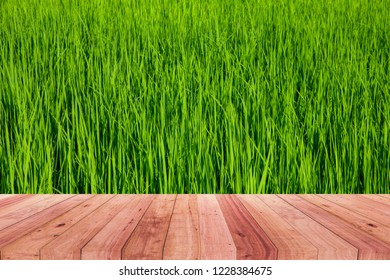 A picture of a wooden desk in front of an abstract blurred background of green rice.