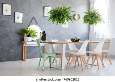 Pictures of various herbs hanging on a black wall in a fern filled interior of a house