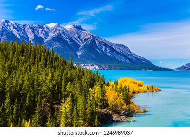 The picturesque Abraham lake in the mountain valley of the Rockies of Canada. The emerald water of the lake is surrounded by evergreen coniferous forests and golden autumn groves of birches and aspen.