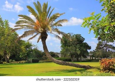 picturesque area in the Park Ramat Hanadiv, Memorial Gardens where buried Baron Edmond de Rothschild, Israel