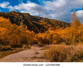 picturesque Arrowtown during autumn, New Zealand
