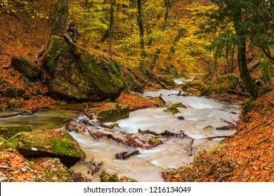 Picturesque autumn gorge with a river running between stones, nature of Crimea, Russia