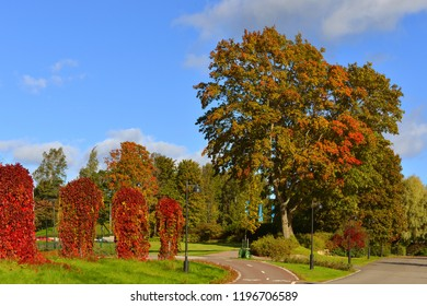 Picturesque autumn in Hesperia park. Helsinki, Finland