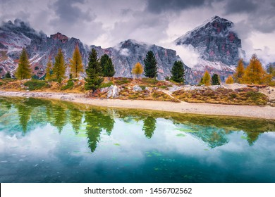 Picturesque autumn landscape, alpine glacier lake and yellow larches, Limides lake with snowy Tofana di Rozes peak in background, Dolomites, Italy, Europe