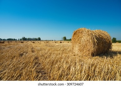 Picturesque countryside landscape. Round straw bales in harvested fields and blue sky