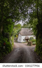 A picturesque Devon country lane surrounded by hedgerows with a thatched cottage in the distance nobody in the image