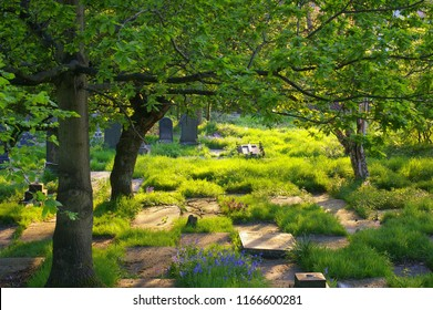 A picturesque graveyard, with the sun shining on horizontal tombstones under the trees, Prestwich, Greater Manchester, UK