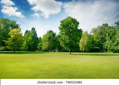 Picturesque green glade in city park. Green grass and trees. Copy space.