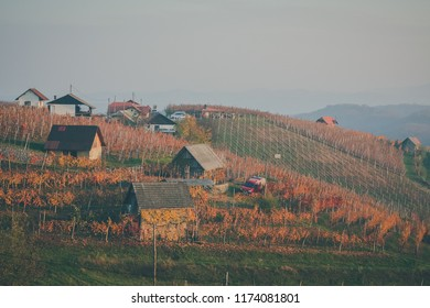 Picturesque hills with vineyards and small houses in Bela Krajina or White Carniola region in Slovenia, on a hazy cold but sunny autumn day. - Shutterstock ID 1174081801