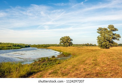 Picturesque image of Dutch National Park De Biesbosch in summertime. The blue sky is reflected in the water surface of the creek and the grass on the bank is yellowed.