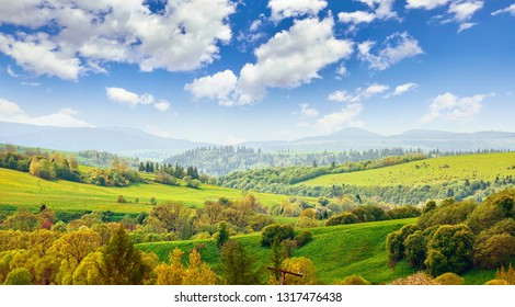 Picturesque landscape in carpathians mountains Ukraine. Hills covered with green meadows with grass and forests trees. Blue sky with clouds. Summer panorama.