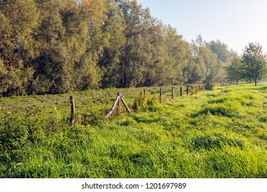 Picturesque landscape of a dike along the Dutch river Donge in Noord Brabant with a long fence diagonally in the picture. It is early in the morning of a sunny day in the beginning of the fall season.