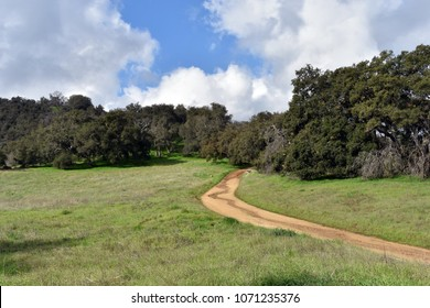 A picturesque landscape, a road that leaves into the forest. Topanga Canyon, California.